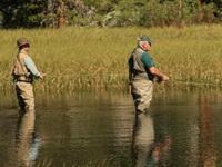 Новые правила любительского и спортивного рыболовства