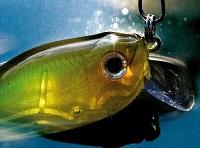 Рыбалка на судака - особенности выбора снастей, подбор места рыбалки, какую наживку использовать. Советы от профессиональных рыбаков
