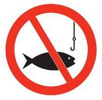 Запрет на рыбную ловлю в Беларуси во время нереста в 2016 году